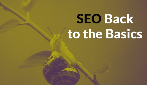 Getting Back to The Basics of SEO